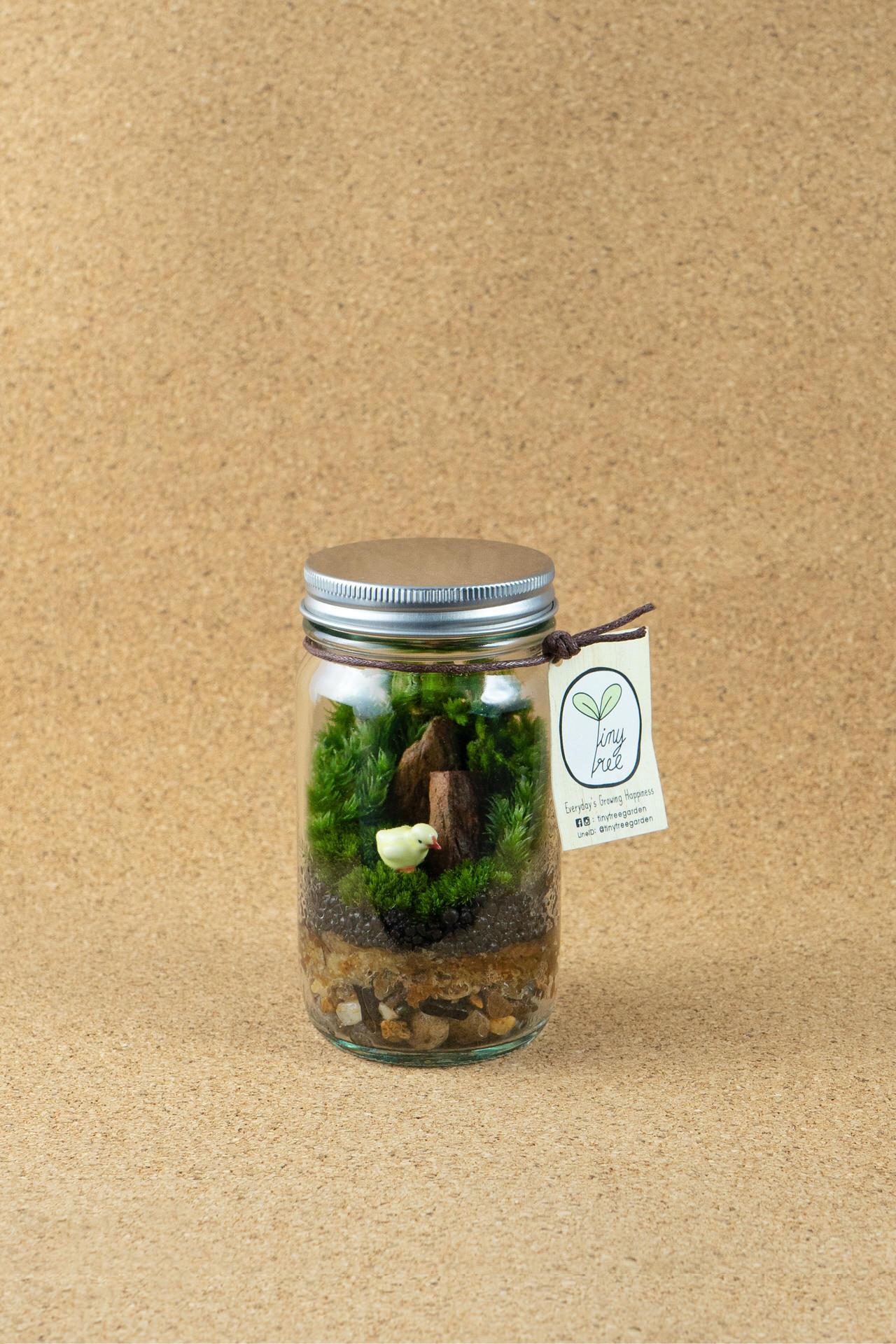 mini forest tiny tree garden. Black Bedroom Furniture Sets. Home Design Ideas